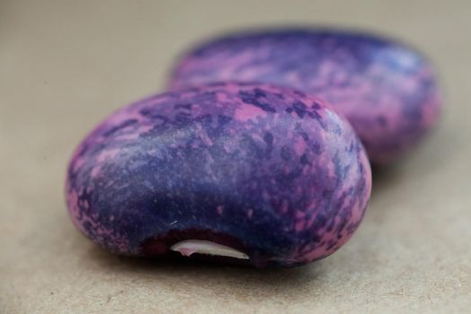 Purple Beans by Neuk