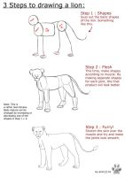 Lion Anatomy tutorial by it-ktdf