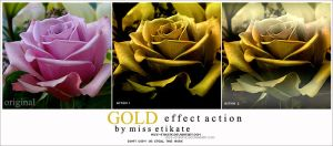 Gold Effect Action by miss-etikate