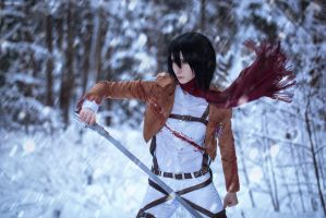 Winter cosplay: Mikasa Ackerman #1 by Tovarish-N