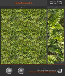 Herbs Pattern 1.0 by Sed-rah-Stock