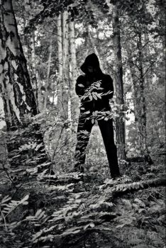 The forest shadow by LuciusThePope
