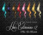 Hair Extensions #2 by Trisste-stocks