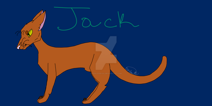 Jack the Cat by Analeisevol
