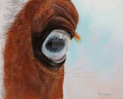 Horse's Blue Eye - soft pastel by sschukina