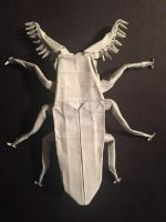 Euthysanius Beetle v3 by Baltorigamist