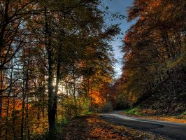 Road to autumn by realityDream