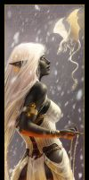 Lakkenaa and Snowball by Dianae