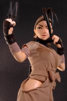 Limited Ed Ibuki 1:4 scale mixed media 5 by chiseltown