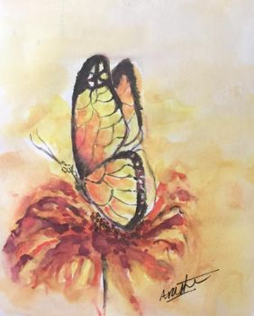Monarch Butterfly by Sara-Arasteh
