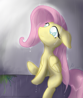 My hope in the rain by D-SixZey