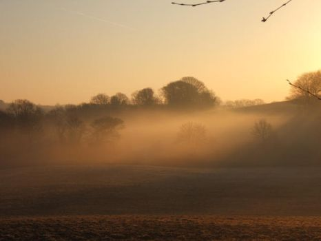 Morning Mist, unploughed field by Annelisa-Views