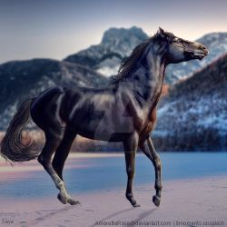 HEE || Horse Avatar | Glance of Freedom by skystream11