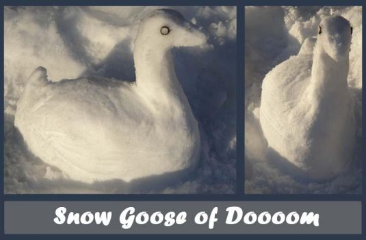 Snow Goose of Doom by Copper-Wolff
