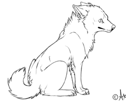 Free canine lineart by Axxread