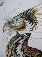 Tygre Bird by verreaux