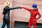 Miraculous Ladybug | LadyNoir | I by Wings-chan