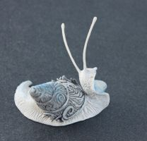 White snail by hontor