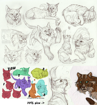 Your Character Here Sketches by ElementalSpirits