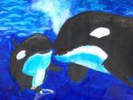 Mother With Baby Orcas by Xx-Vintage-Girl-xX