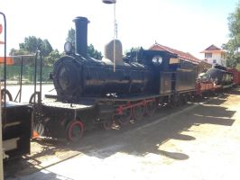Merridin Railway Museum - WAGR G Class No.117 by The-ARC-Minister