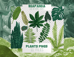 Renders 014 // Plants Pngs by BEAPANDA