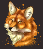 Fox portrait by RaikaDeLaNoche