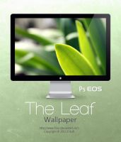 The Leaf Wallpaper by Fi3uR