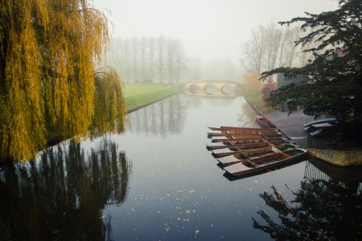 Foggy Morning In Cambridge II by torobala