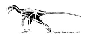 Best guess Dromaeosaurus