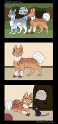 Tawny [Breeding Papers] by Shadowfangirl2-7-5