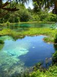 Rainbow Springs by evilpokejuggalette