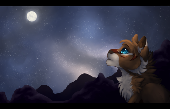 StarClan Watches Over You by Blizzardrunner