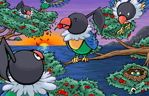 Lots of Chatot