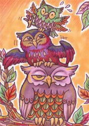 Three owls by Curry-24