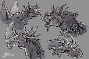 Dragon Concepts by ISHAWEE
