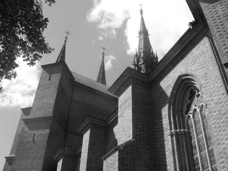 Uppsala cathedral2 by tiphes