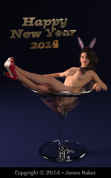 Happy New Year 2014 NSFW by odhinnsrunes