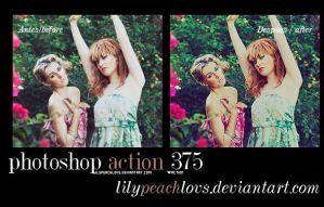 photoshop action 375 by lilypeachlovs