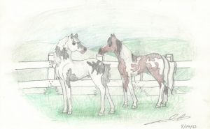 The Colt and the Filly by HideawayArtist