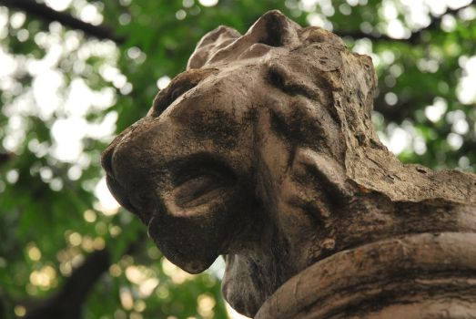 Lion Sculpture by iamcaryl