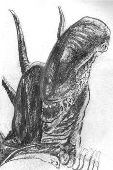 Alien Sketch 1 by NioTheDreamer