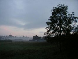 Foggy barnscape by Lectrichead