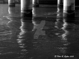 Pilings, Reflected  by peterkopher