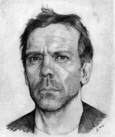 Hugh Laurie by aljas