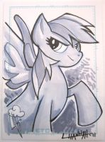 VA Comicon 2011: Rainbow Dash by stratosmacca