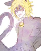 Chat Noir Doodle by Heruine