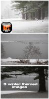 Winter Theme Stock 1 by Unrestricted-Stock