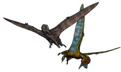 Pterodactyl Mating Flight by Ashere