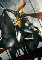 French Cavalry by funkychinaman